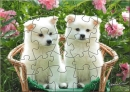 OSC Cute Puppies Puzzle