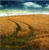 Grain Field Puzzle