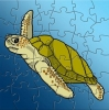 MWW Turtle Puzzle
