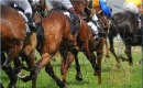 MMO Horse Racing Puzzle