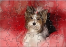 DB Cute Puppy Puzzle