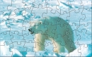 TTOD Polar Bear Puzzle