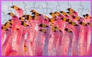Flamingo Picture Puzzle