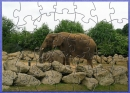 Large Elephant Jigsaw Puzzle