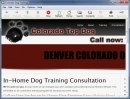 Denver Dog Training 3