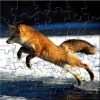 Jumping Fox Puzzle