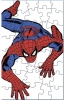 AE Spider Man Puzzle