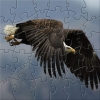 FTLR Soaring Eagle Puzzle