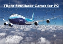 Flight Simulator Games for PC
