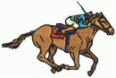 Horse Racing Beginners 2011 Guide