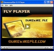 Down Loader FLV Player