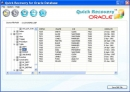 Oracle Database Backup Recovery Software