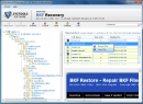 C�mo Restaurar el Archivo BKF (How To Restore BKF File)