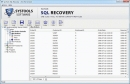 MS SQL Server 2008 Database Recovery
