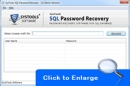Reset SQL Server Password 2008