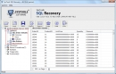 MS SQL Database File Recovery Software